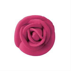 Fuchsia Icing Rose Multipack